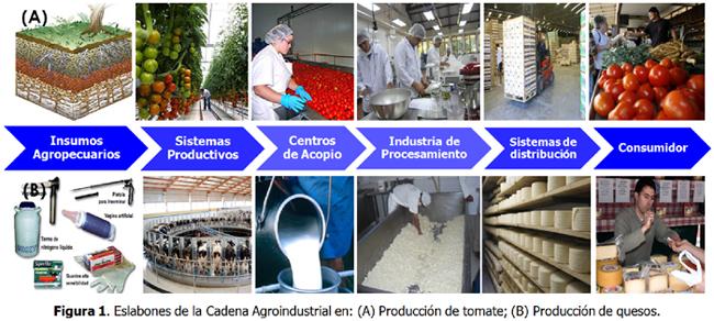 Ayudas en transformación y desarrollo de los productos agrícolas