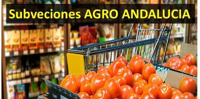 Subvenciones ISO 9001 y Seguridad alimentaria en Andalucía
