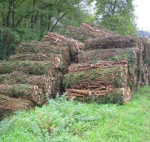 Sustitución de calderas de combustibles fósiles por biomasa