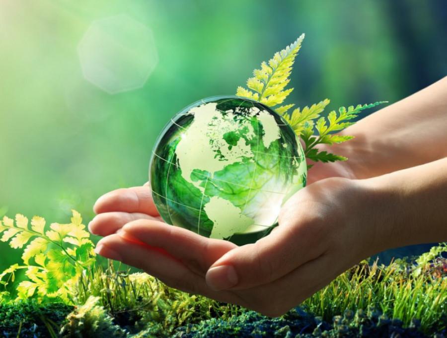 Deducción por inversión para la protección del medio ambiente